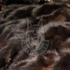 Шкурки соболя, порода «Салтыковская-1» (Глухой)
