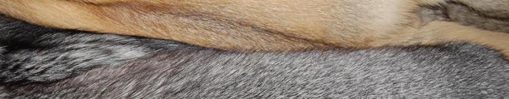 Производство меха и кожи