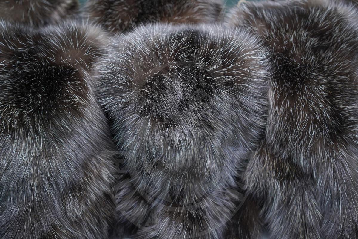 Соболь «Салтыковский» на аукционе Saga Furs