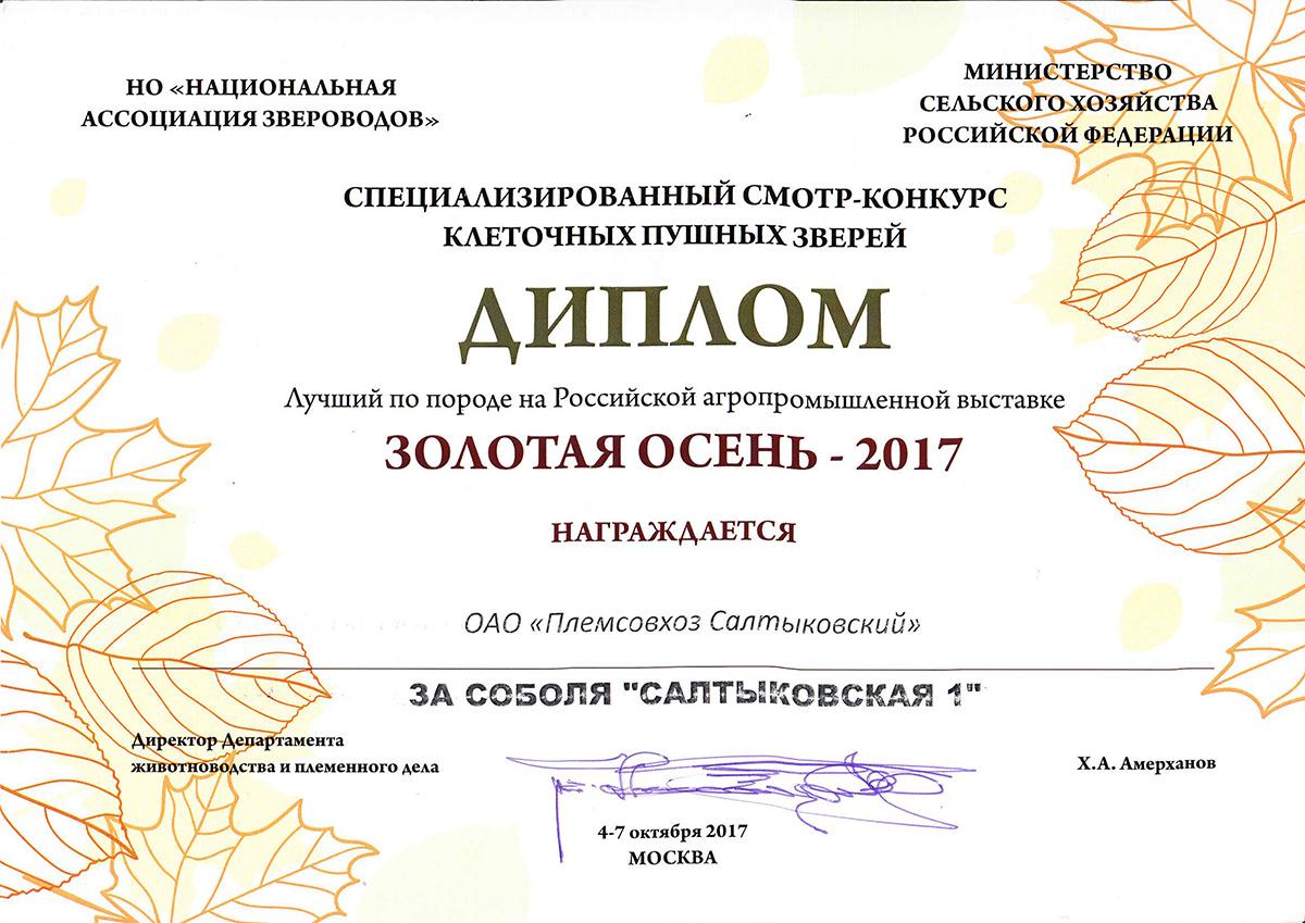 Золотая Осень 2017